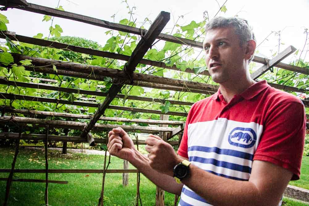 Wine Tour at Rotari in Trentino