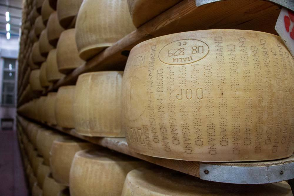 Parmigiano Reggiano Cheese Wheels at Latteria Sociale S.Stefano in the Food Valley