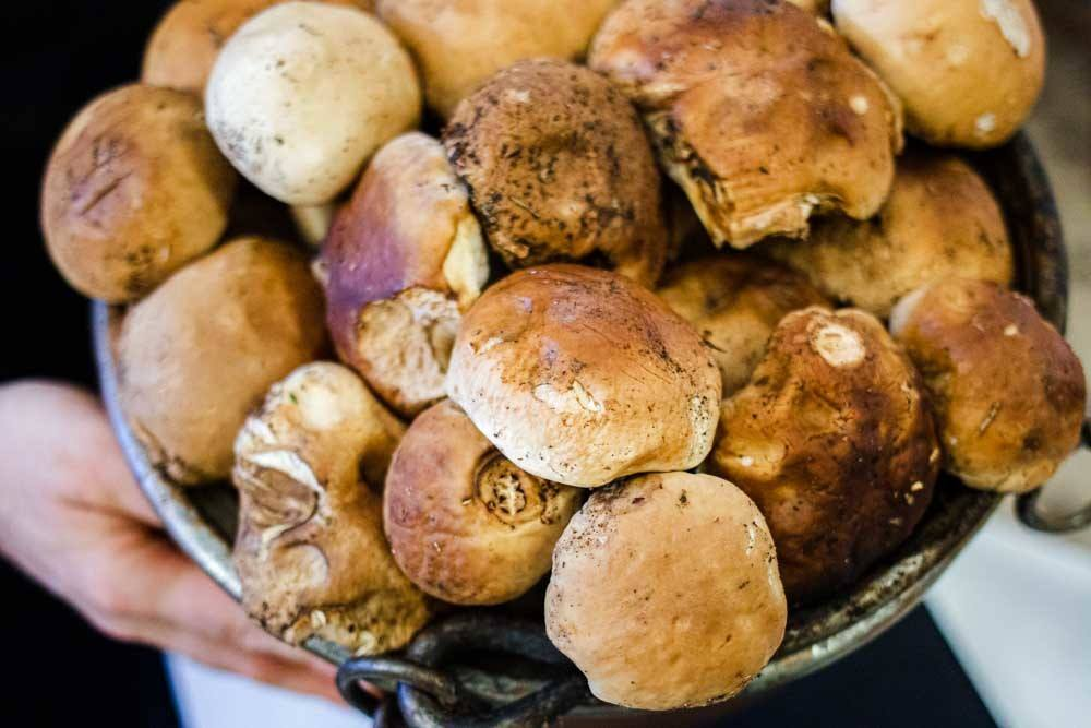 Porcini Mushrooms at Trattoria Ai Due Platani near Parma