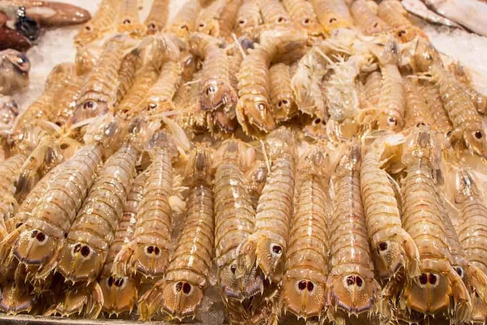 Mantis Prawns at Mercato di Rialto in Venice