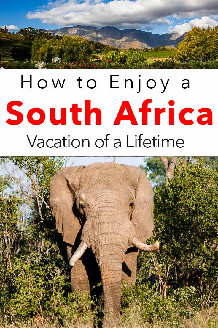Pinterest image: two images of South Africa with caption reading 'How to Enjoy a South Africa Vacation of a Lifetime'