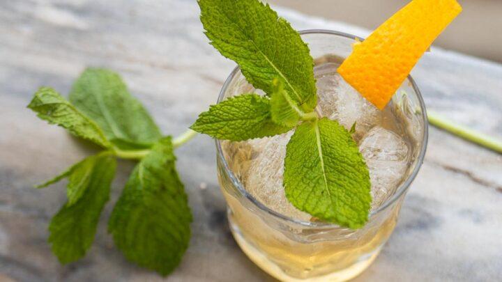 White Port and Tonic Cocktail – Portugal's Porto Tonico