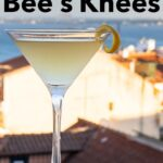 Pinterest image: image of Bees Knees cocktail with caption reading 'How to Make a Bee's Knees'
