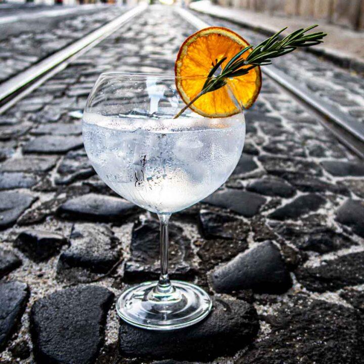 Gin and Tonic Recipe IMG Recipe