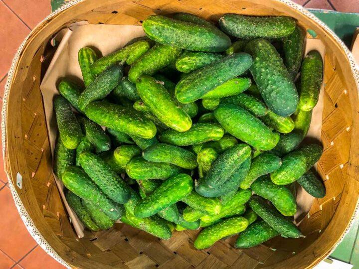 Pickles in Vilnius