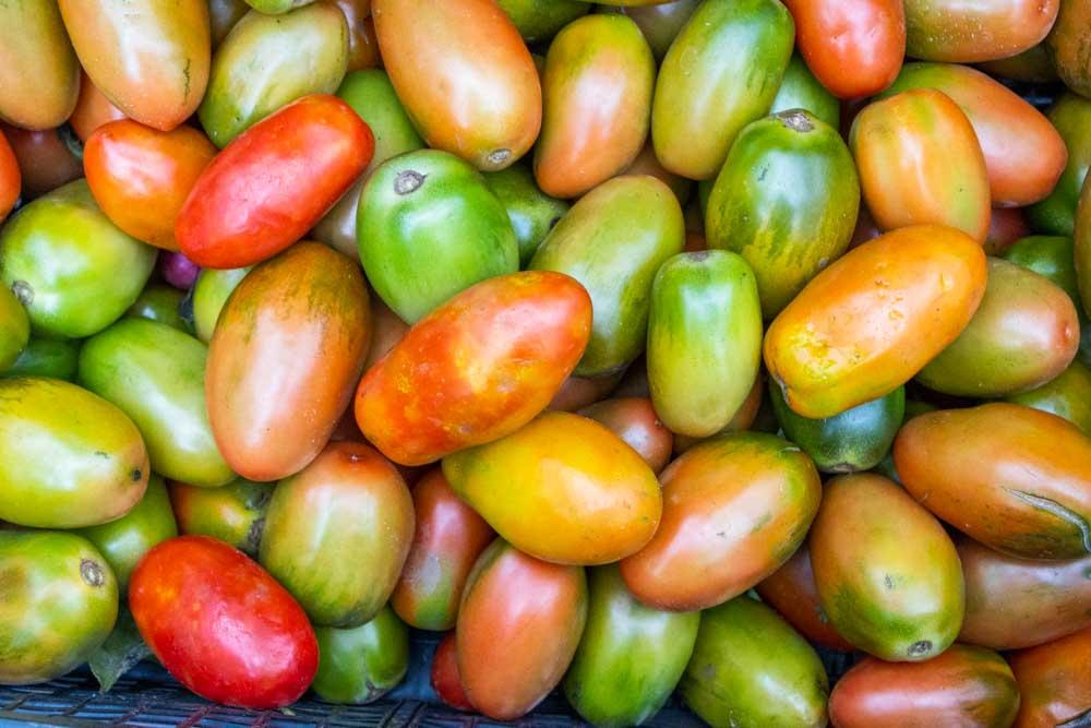 Tomatoes at Mercato di Testaccio in Rome