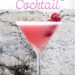 """Pinterest image: pink lady cocktail with caption reading """"How to Make a Pink Lady Cocktail"""""""