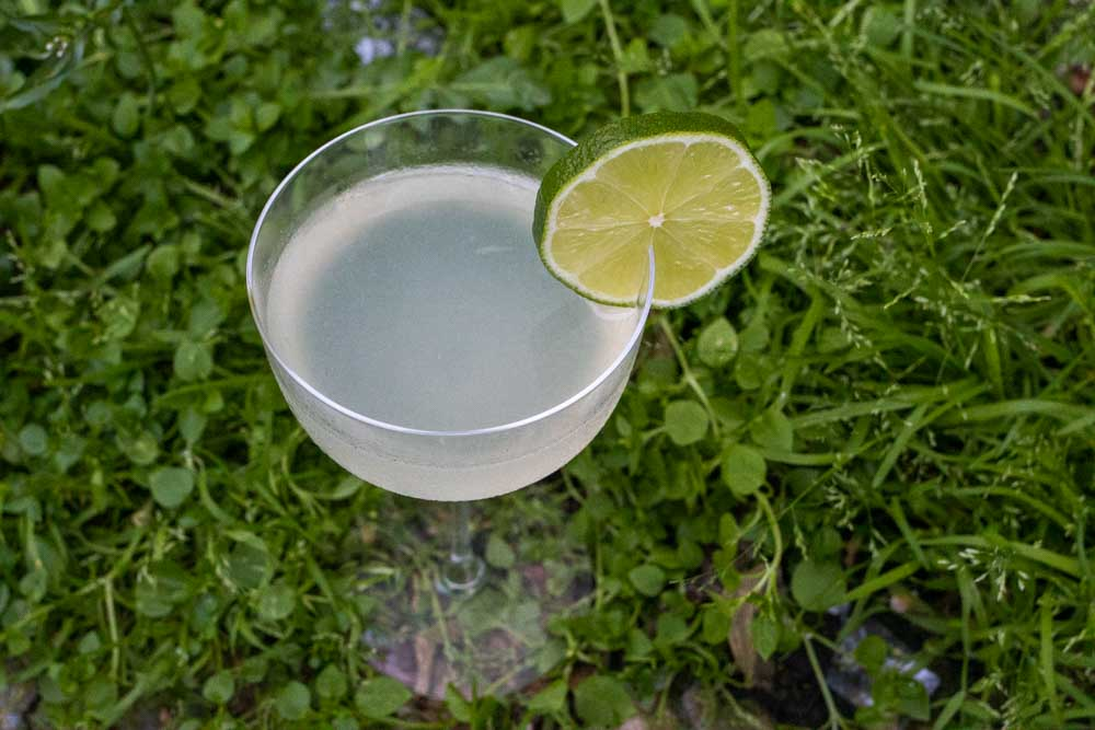 Spring into the Weekend with a Gin Giimlet - cover
