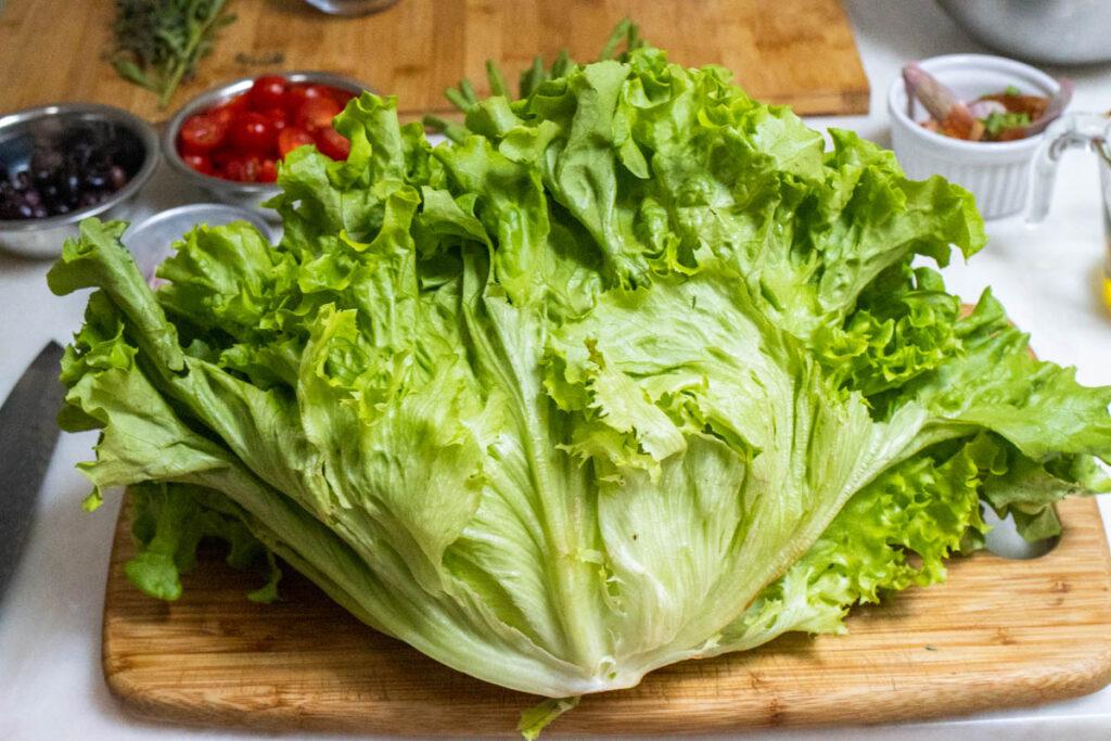 Head of Romaine Lettuce for Nicoise Salad