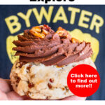 """Pinterest image:turtle cookie with caption reading """"Eat Drink Explore Bywater New Orleans"""""""