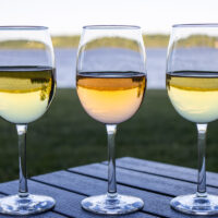 Wine Glasses at Hutton Brickyards in Kingston