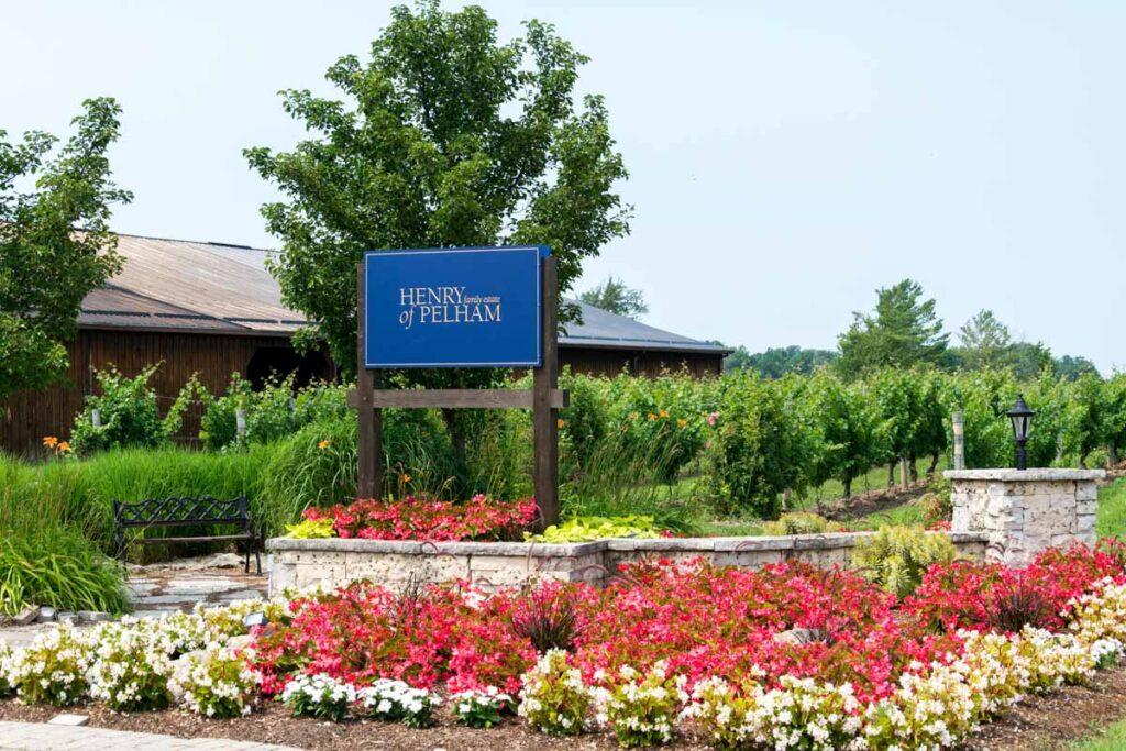 Henry of Pelham Winery Stock Photo