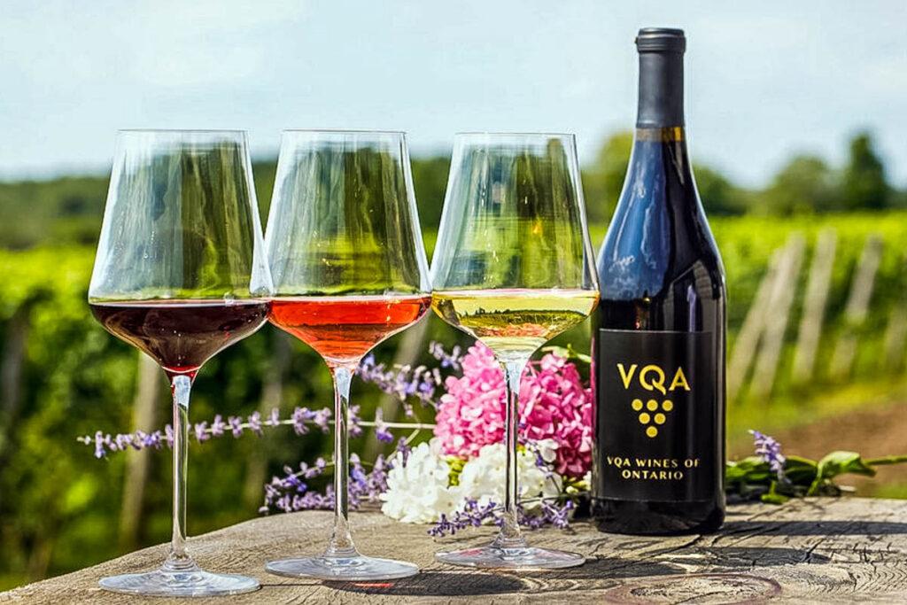 Ontario Wine in Glasses Stock Photo