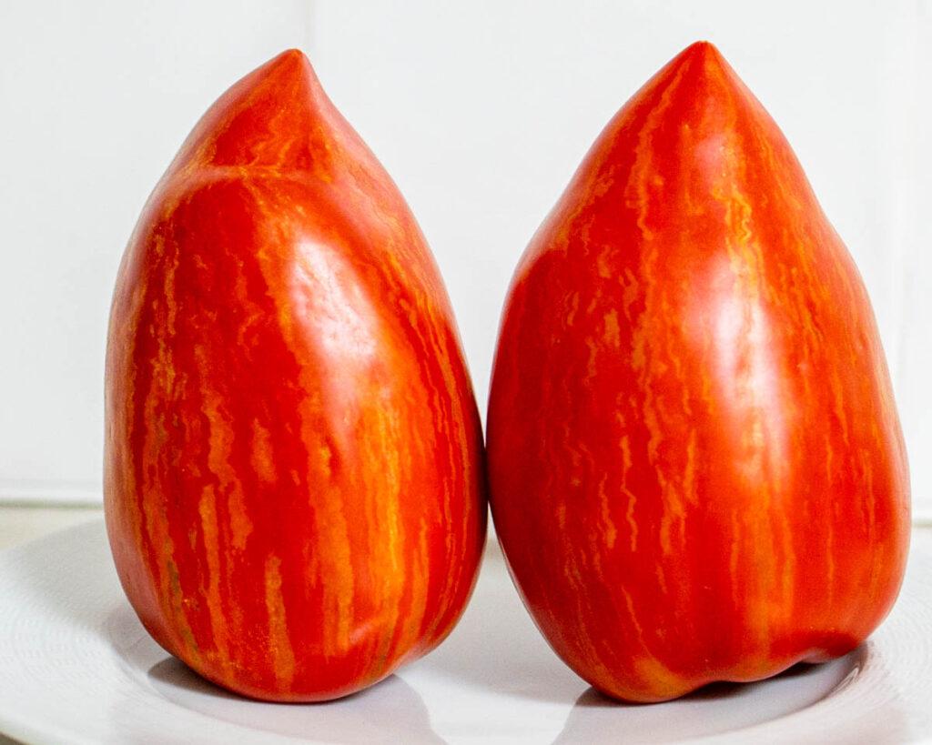 Two Tomatoes for Pasta al Pomodoro